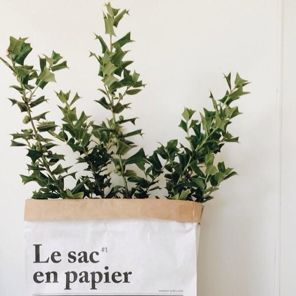 le-sac-en-papier-be-poles6