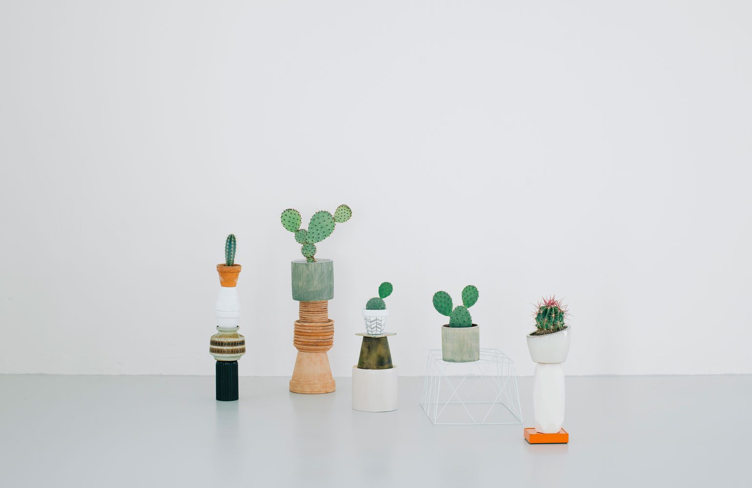 kaktus store, cactus shop by chiara stella home6