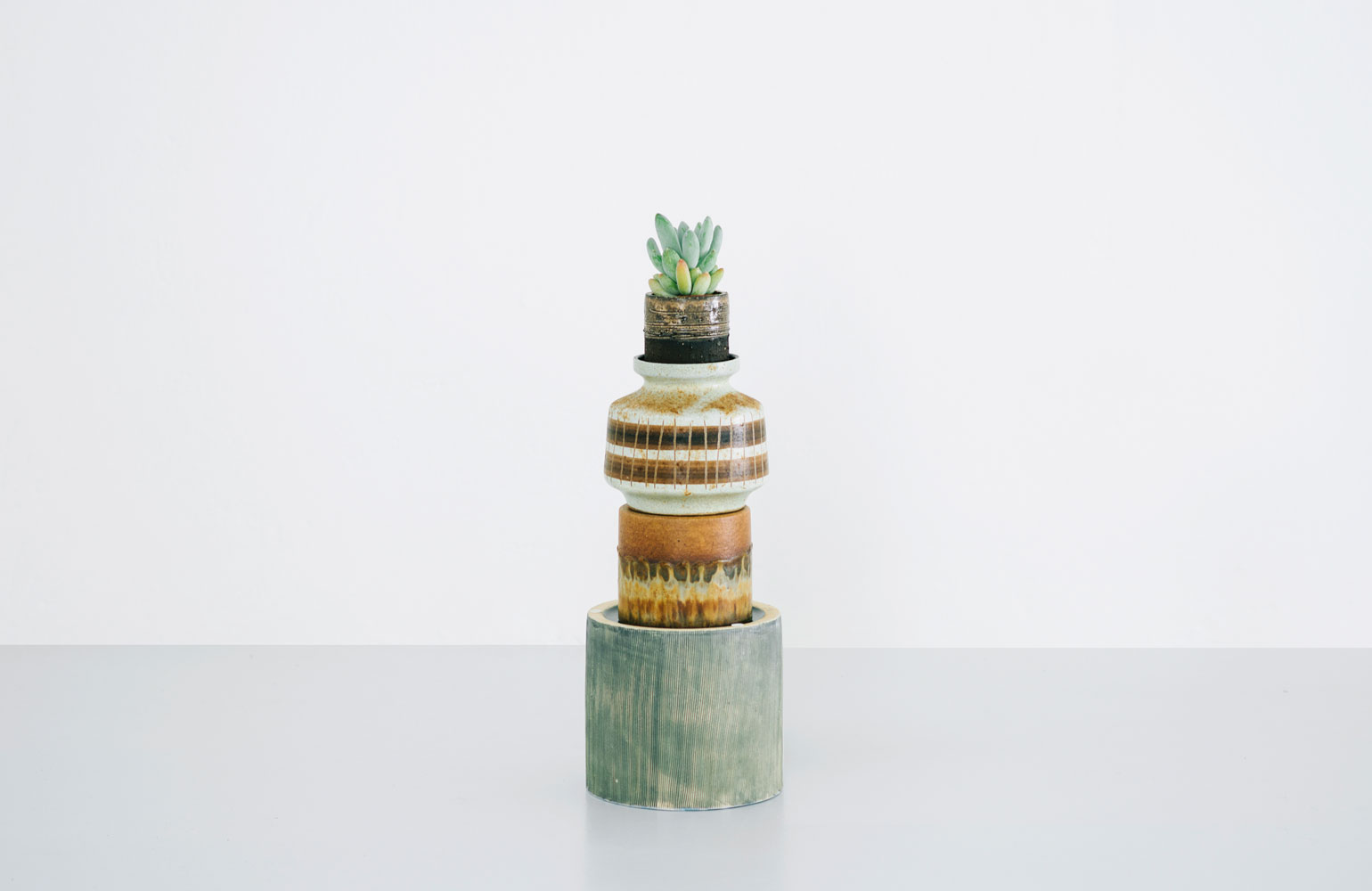 kaktus store, cactus shop by chiara stella home8