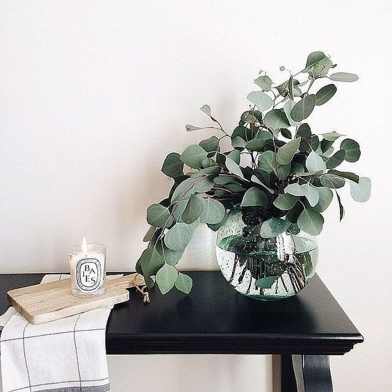 decorer-avec-eucalyptus-by-chiara-stella-home3